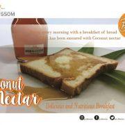 Organic Coconut Nectar ( Madu Vegan ) 250 mL - Java Blossom 3