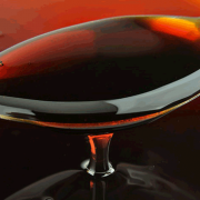 Organic Coconut Syrup ( Sirup Kelapa ) 250 mL - Java Blossom 2